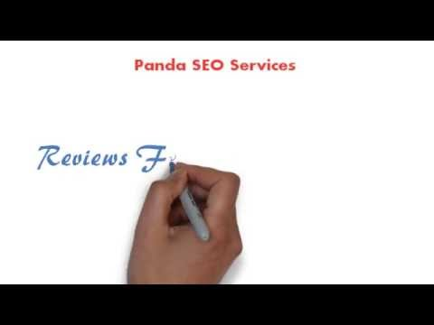 Panda SEO Services Client Reviews