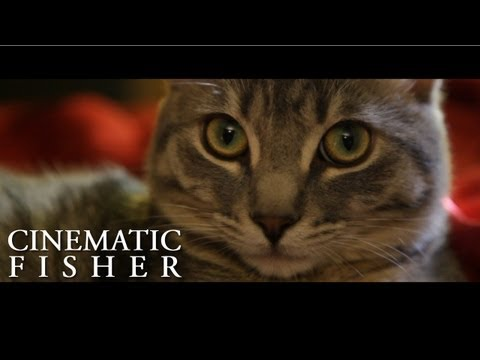 Cinematic Fisher