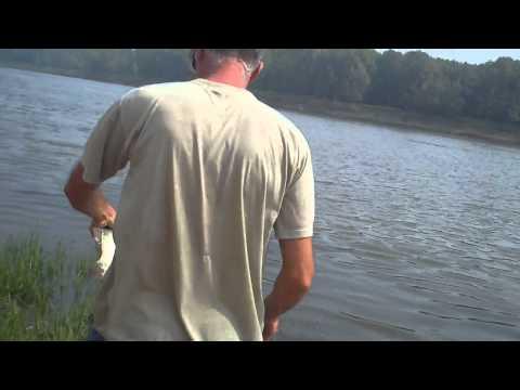 рыбалка в косике астраханской области