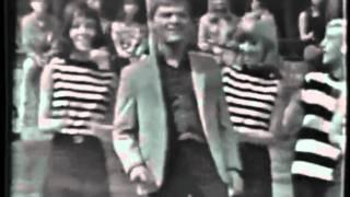 Brian Hyland - The Joker Went Wild