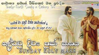 Sunday Holy Mass (Twenty-Fourth Sunday in Ordinary Time)- 12/09/2021
