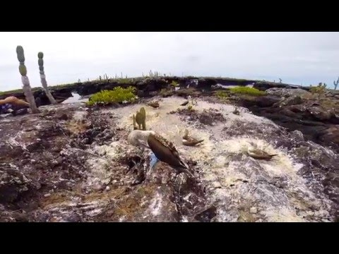 BACKPACKING SOUTH AMERICA & CENTRAL AMERICA (GoPro) - BRAZIL WORLD CUP 2014