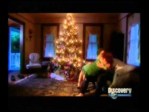 Discovery Channel   Anatomy of Sex Full episode [TVRip]