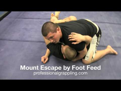 PGL Professional Grappling League -Instructional - Alan Wright with Jeff Lentz - Mount Escape BJJ Image 1