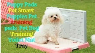 Puppy Pads Pet Smart // Puppies Pet training pads // Pet Dog Training Toilet Mat Tray
