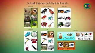 Learning Animal, Instrument & Vehicle Sounds for Preschool Kids