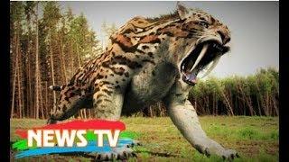 Top 10 loài động vật tuyệt vời nhất bị tuyệt chủng