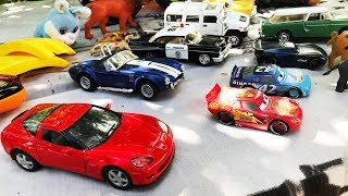 New Toy Cars For Kids! Best sport cars and toys for children! Dinosaurs!