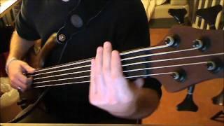 download lagu Fretless Bass Cover Primus - My Name Is Mud gratis