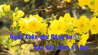 Karaoke | Nếu Xuân Này Vắng Anh - St. Bảo Thu | Nhạc Xuân 2019 Không Lời