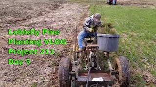 Project 211 Illinois hunting land Planting loblolly pines DAY 5 VLOG