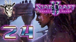 #24 ● Die Streitkräfte sind angekommen ● StarCraft II - Heart of the Swarm