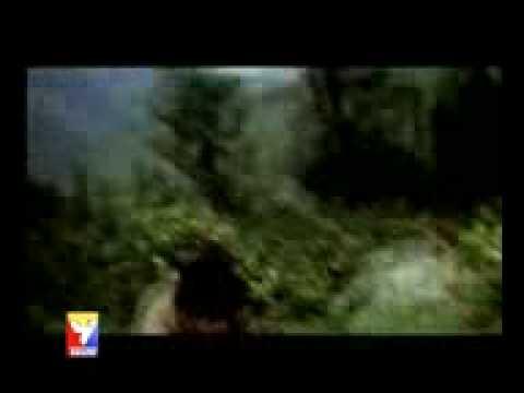 1981 Love Story - Dekho Maine Dekha Hai Ye Ek Hasin Sapna