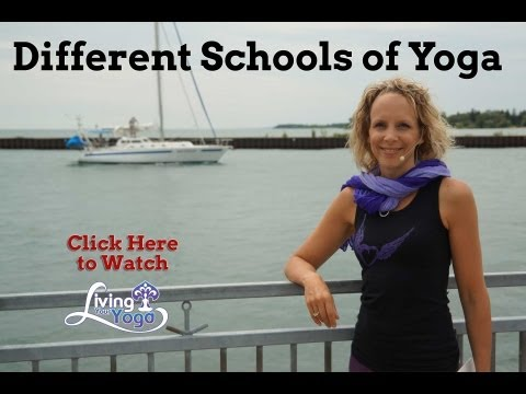 Different Schools of Yoga for You