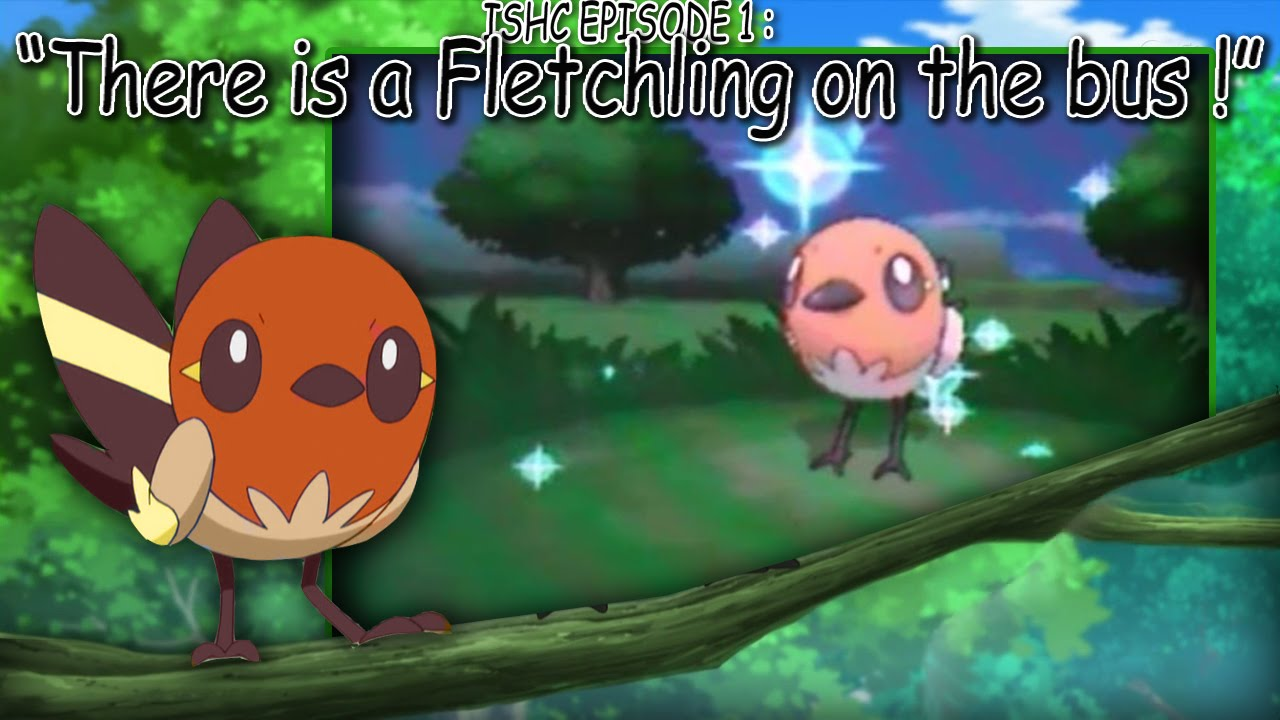 Displaying 20 gt images for pokemon fletchling shiny