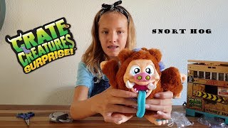 Unboxing Crate Creature Surprise SNORT HOG