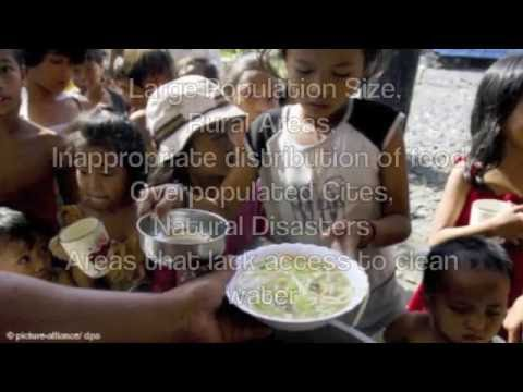 Malnourishment and Hunger in South Asia