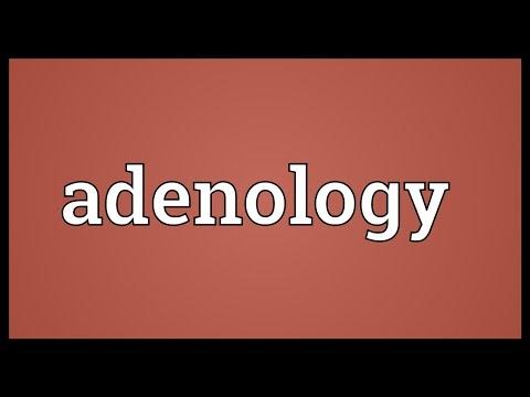 Header of adenology
