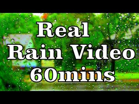 rain The Sound Of Rain In A Car #5 sleep Video 60mins video