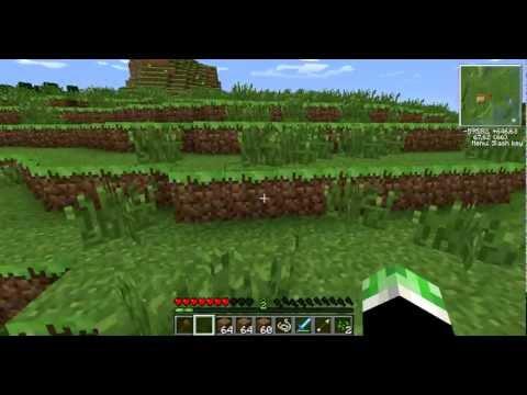 Видео как приватить в Minecraft