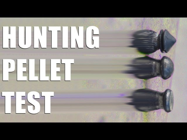 Fieldsports Britain - Rabbit shooting pellets and how to forage for food  (episode 157)