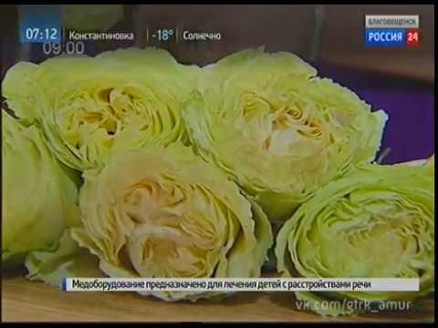 День в профессии флорист