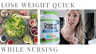 HOW TO TO LOSE WEIGHT WHILE BREASTFEEDING | Full Day of Eating 2020 | Taylor Lindsay