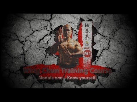 Wing Chun Sli Lim Tao - Know yourself Image 1