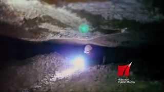 Houston Public Media: History Sizzle - PBS