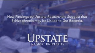 Upstate Medical University-New Findings Suggest Schizophrenia May be Linked to Gut Bacteria