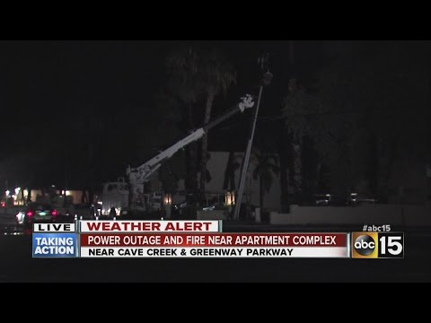 Gunshot fired from gas station leads to tree fire,...