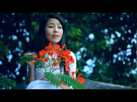 Nỗi Buồn Hoa Phượng - Lưu Ngọc Hà video