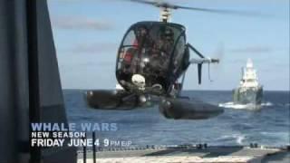 Whale Wars Season 3 Preview - Animal Planet