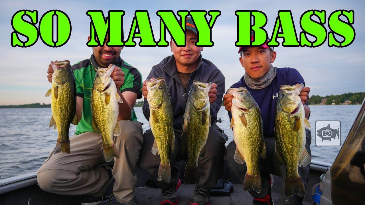 Bass Opener Week Smashfest