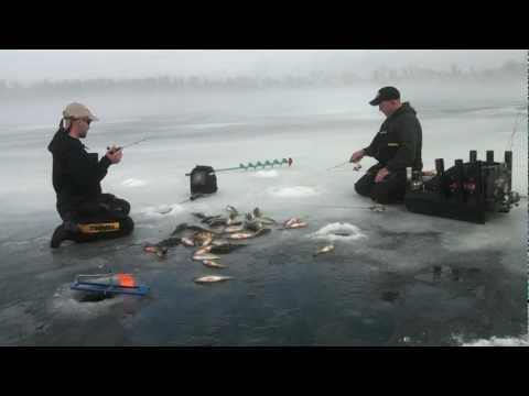 Ice fishing crappie and perch slam