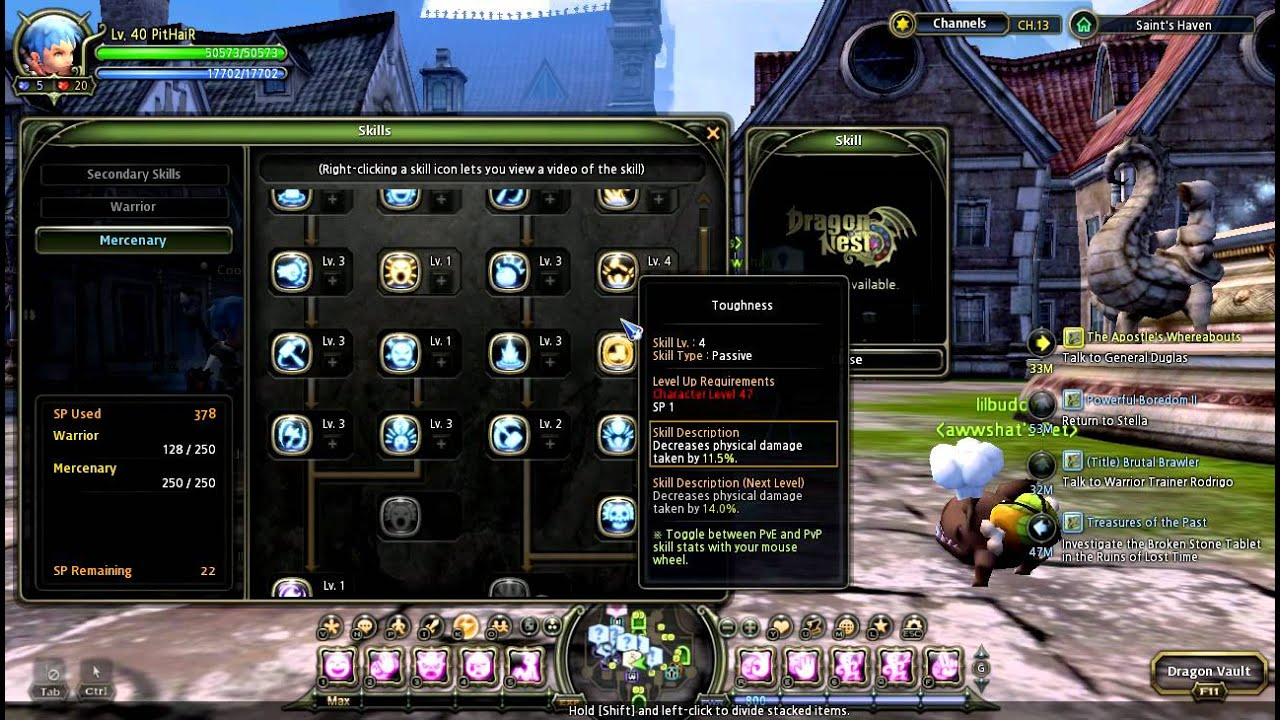 Mercenary Pvp 40 Build