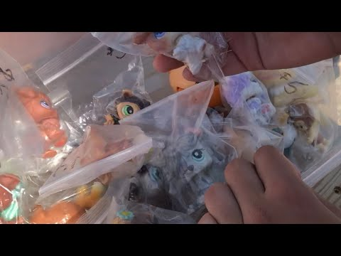 Lps Mega Flea Market Finds!