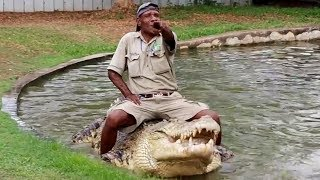 इस खतरनाक खेल को देखने के लिए दुनिया भर से लोग जाते है - Man & Crocodile Play