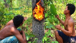 Fire Burn Inside Hollow Tree To Get Resin​ Tree (Oil)
