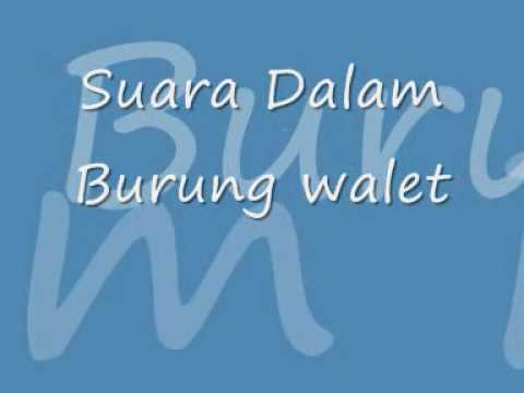 Movie Suara Burung Walet video