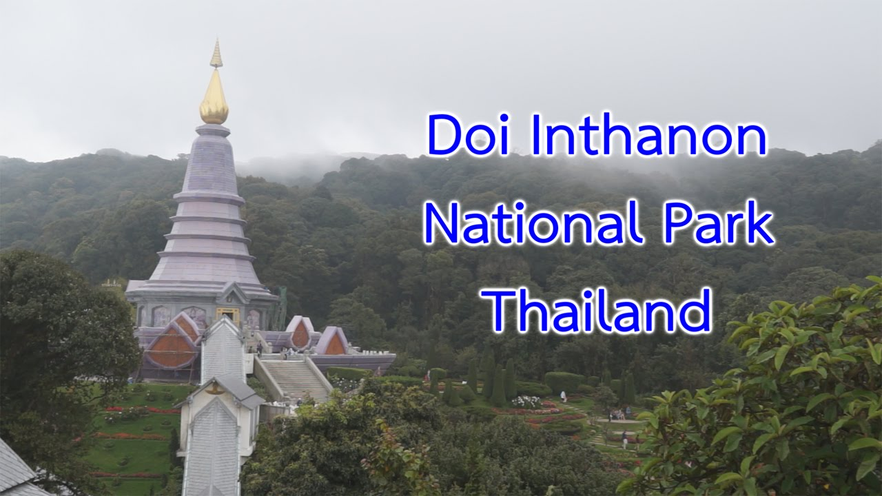 how to find doi for