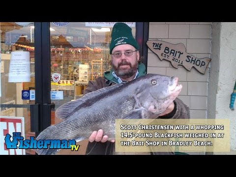 November 20, 2014 New Jersey/Delaware Bay Fishing Report with Chris Lido