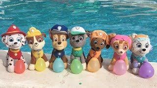 Aprende los colores con juguetes Paw patrol y Chase en la piscina. Videos educativos para niños