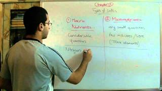 Biology - Chapter 1 - Nutrition - part 4 (Essential mineral salts) - Abdallah Reda el Sayed