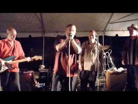 My Babe, the finale with the Little Walter Tribute Band @ Alonzo's Picnic 2013