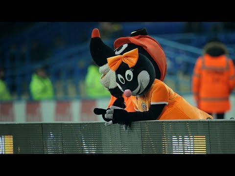 Shakhtar vs Oleksandriia. Around the match