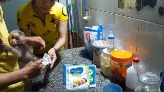 Baby Monkey Doo Morning Routine After Getting Up - Funny Animals