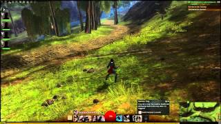 Guild Wars 2 Thief - Dual Pistols & Shortbow