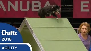 Agility - Championship Round 2 (Agility) Part 2 | Crufts 2018