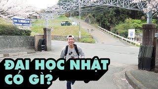 [DU HỌC NHẬT] TRƯỜNG ĐẠI HỌC Ở NHẬT CÓ GÌ? | Vlog | #HieuLieuTieuVlog